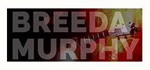 breeda murphy website design rosscarbery cork